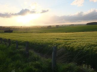 paysage Nimbermont