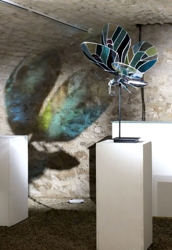 Papillon bleu ©Aurélie Moreau/Xavier Embise